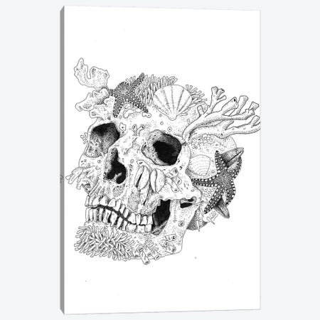 Aqua Skull Canvas Print #MML1} by Mister Merlinn Canvas Print