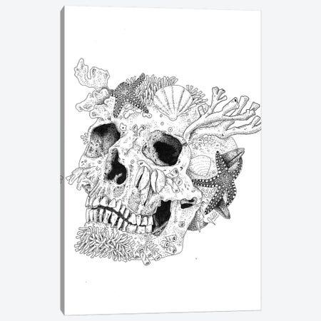 Aqua Skull Canvas Print #MML1} by Mister Merlinn Canvas Print