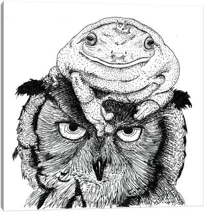 Grumpy Owl Canvas Art Print