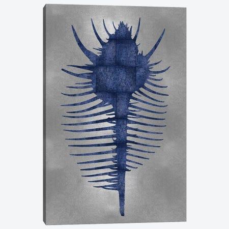 Blue On Silver VI Canvas Print #MMR10} by Melonie Miller Canvas Art