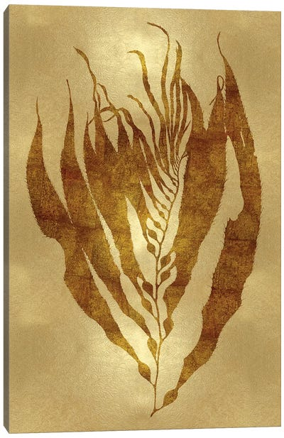 Sea Life Series: Gold I Canvas Print #MMR11