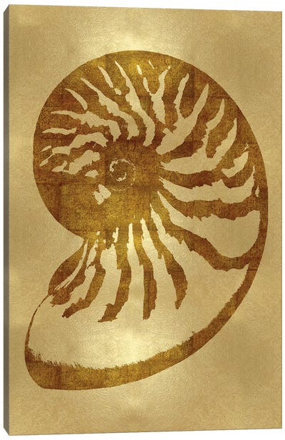 Sea Life Series: Gold III Canvas Print #MMR13