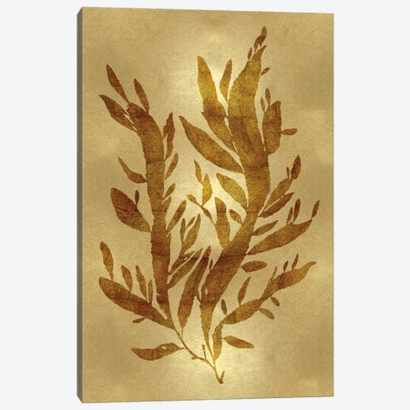 Gold IV Canvas Print #MMR14} by Melonie Miller Canvas Print