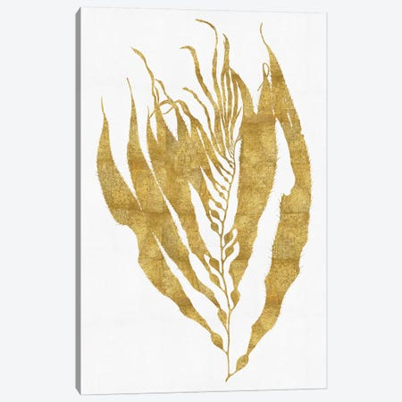Gold On White I Canvas Print #MMR15} by Melonie Miller Art Print