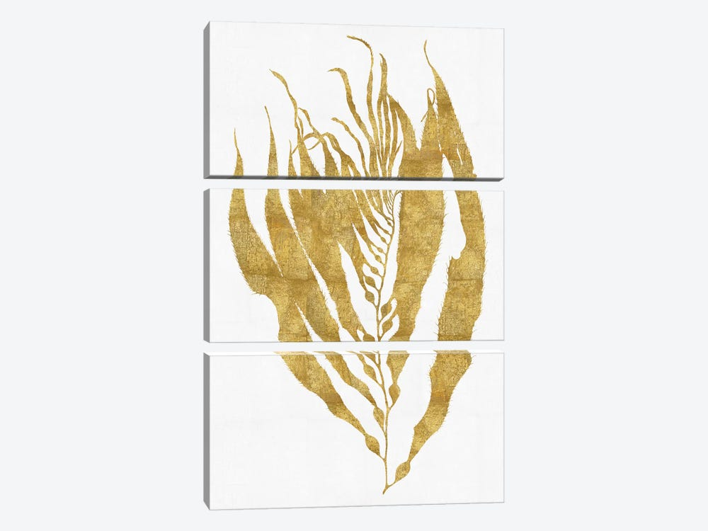 Gold On White I by Melonie Miller 3-piece Canvas Artwork