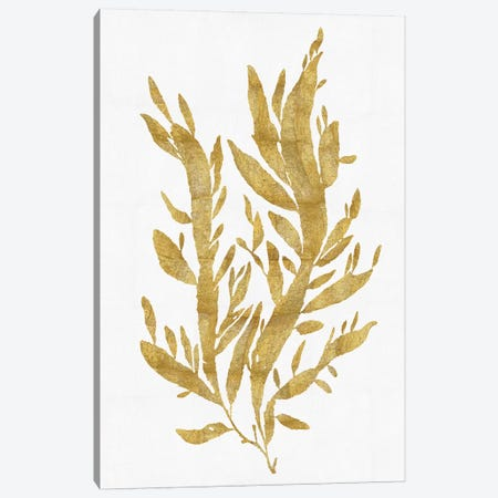 Gold On White IV Canvas Print #MMR18} by Melonie Miller Canvas Wall Art