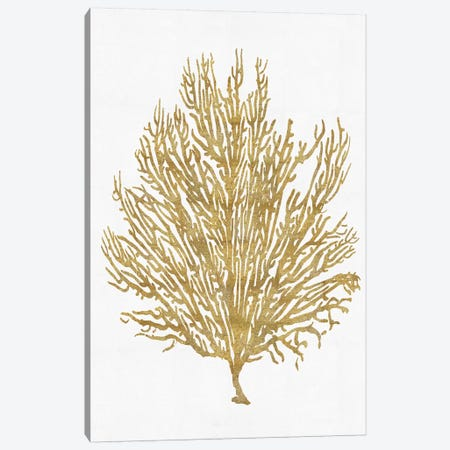 Gold On White V Canvas Print #MMR19} by Melonie Miller Canvas Art