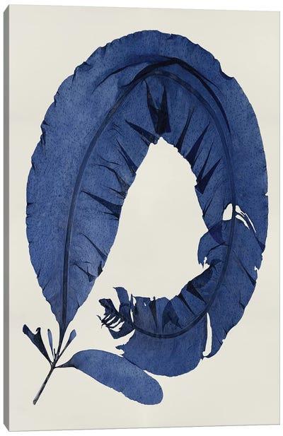 Sea Life Series: Indigo I Canvas Print #MMR23