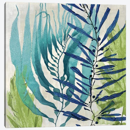 Sea Nature I Canvas Print #MMR27} by Melonie Miller Canvas Art