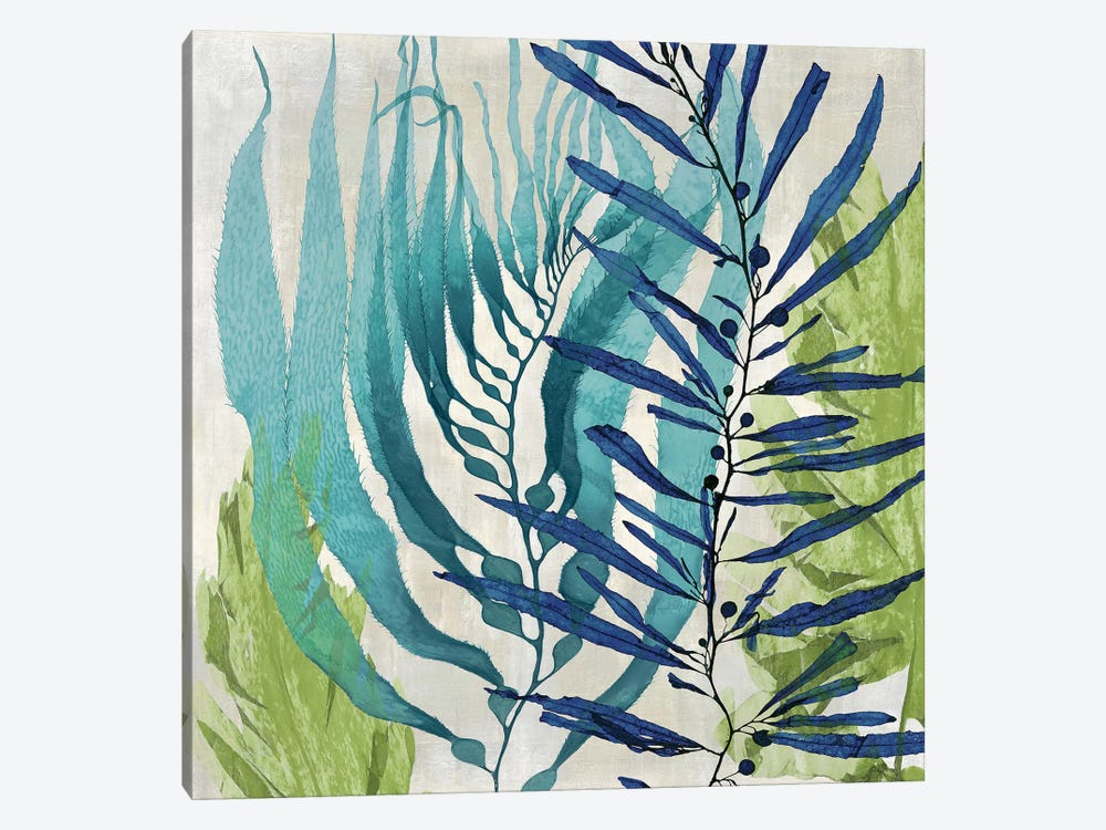 Sea Nature I by Melonie Miller 1-piece Canvas Art Print