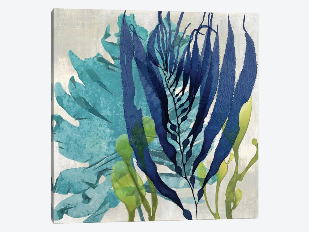 Sea Nature II by Melonie Miller 1-piece Canvas Wall Art