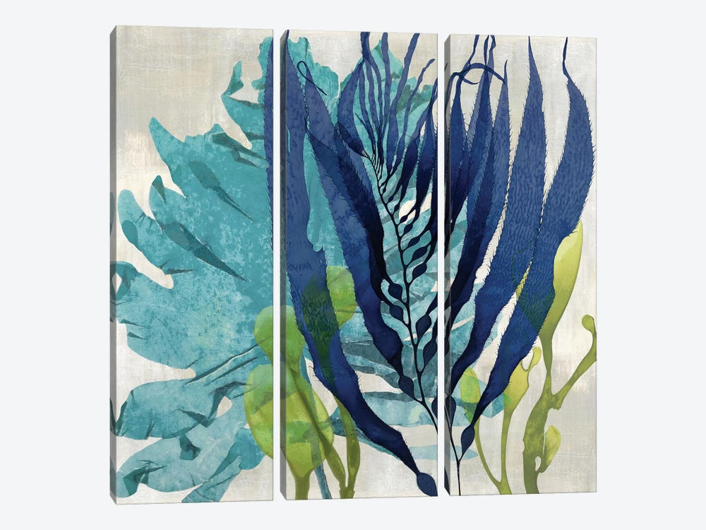 Sea Nature II by Melonie Miller 3-piece Canvas Art