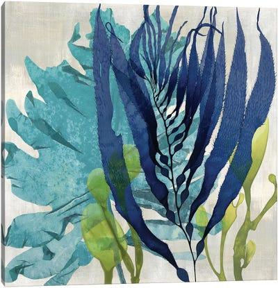 Sea Nature II Canvas Art Print