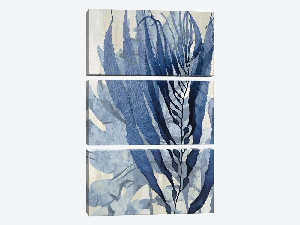 Sea Nature In Blue I by Melonie Miller 3-piece Canvas Art Print