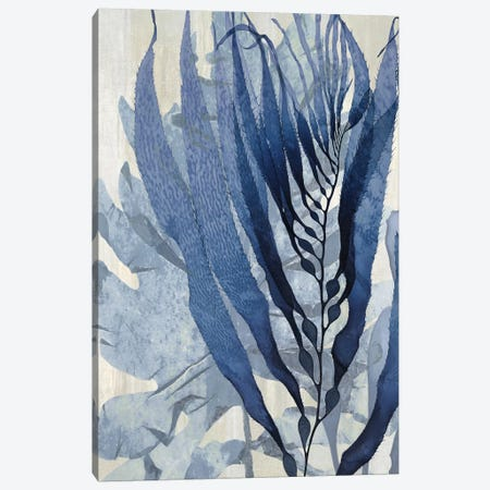 Sea Nature In Blue I Canvas Print #MMR29} by Melonie Miller Art Print