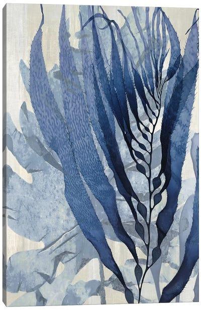 Sea Nature In Blue I Canvas Art Print