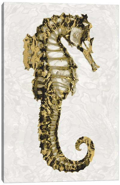 Golden Sea Horse II Canvas Art Print