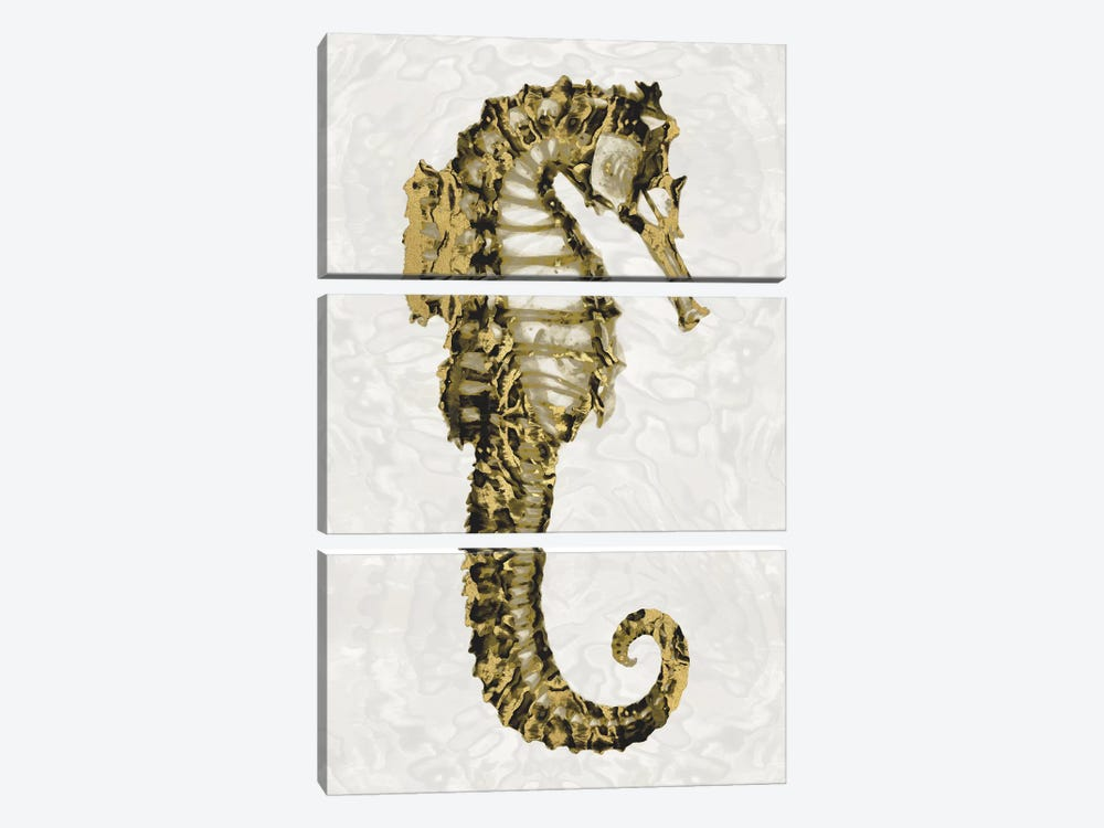 Golden Sea Horse II by Melonie Miller 3-piece Canvas Print