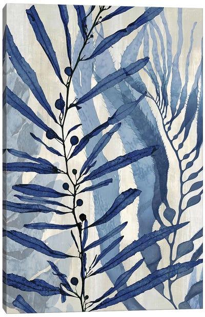 Sea Nature In Blue II Canvas Art Print