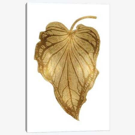 Gold Palm III Canvas Print #MMR35} by Melonie Miller Art Print