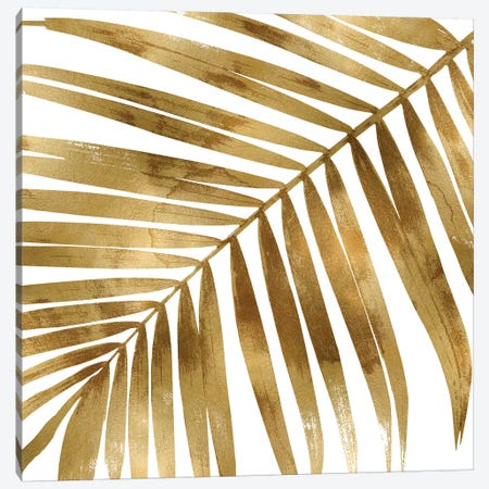 Gold Palm, Close-Up I Canvas Print #MMR37} by Melonie Miller Canvas Print