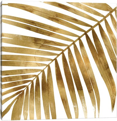 Gold Palm, Close-Up I Canvas Art Print