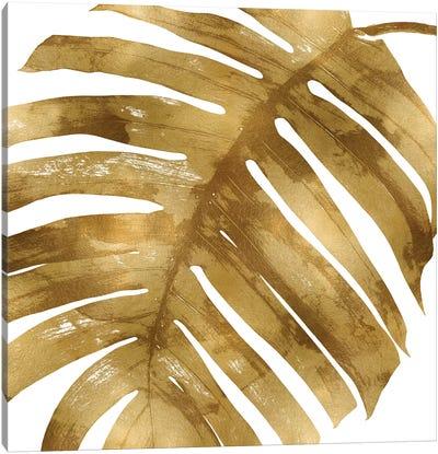 Gold Palm, Close-Up II Canvas Art Print