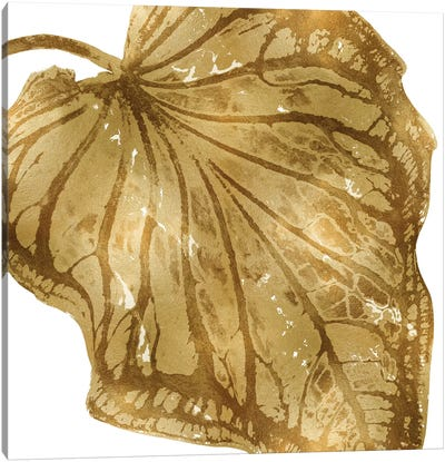 Gold Palm, Close-Up III Canvas Art Print