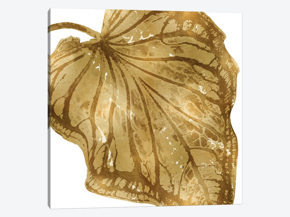 Gold Palm, Close-Up III by Melonie Miller 1-piece Canvas Wall Art