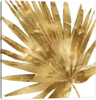 Gold Palm, Close-Up IV Canvas Art Print