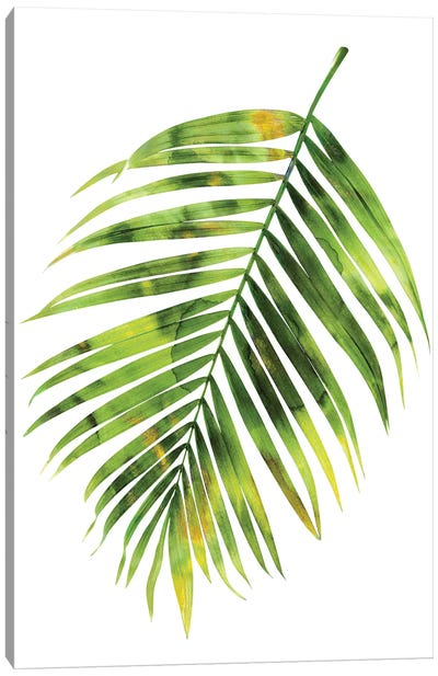 Green Palm I Canvas Art Print