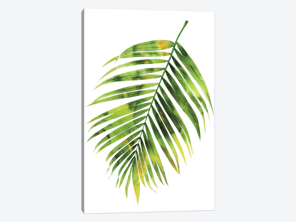 Green Palm I by Melonie Miller 1-piece Canvas Art Print