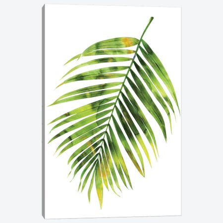 Green Palm I Canvas Print #MMR41} by Melonie Miller Canvas Art Print