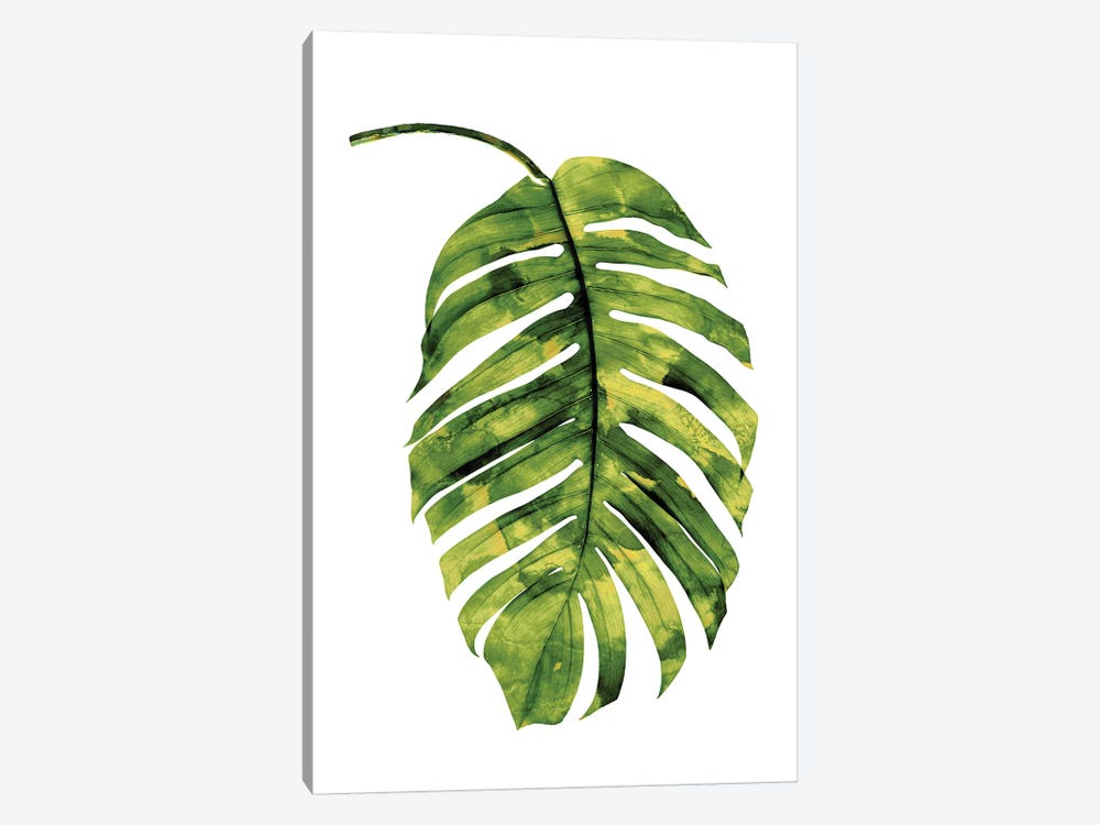Green Palm II by Melonie Miller 1-piece Canvas Art