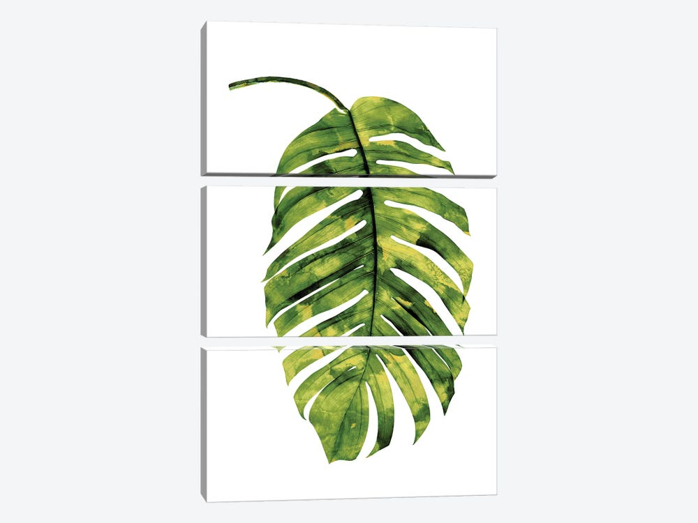 Green Palm II by Melonie Miller 3-piece Canvas Wall Art