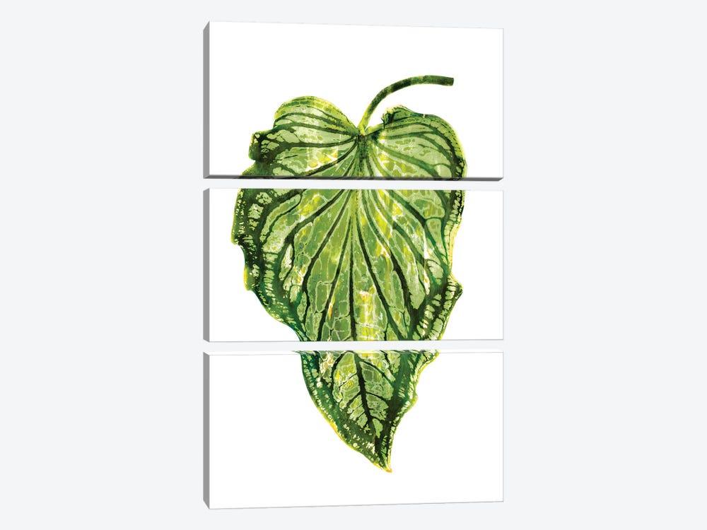 Green Palm III by Melonie Miller 3-piece Art Print