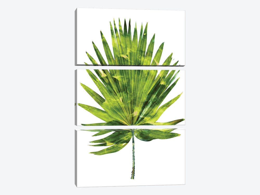 Green Palm IV by Melonie Miller 3-piece Canvas Wall Art