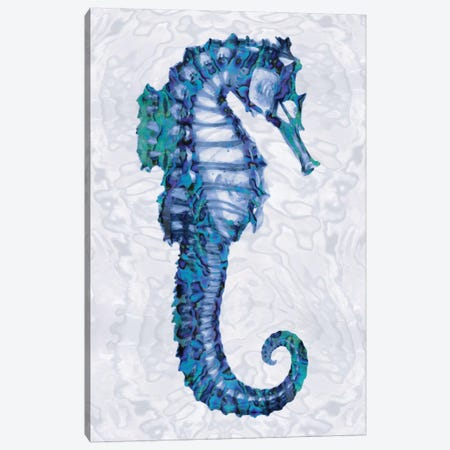 Sea Horse II Canvas Print #MMR4} by Melonie Miller Canvas Art Print