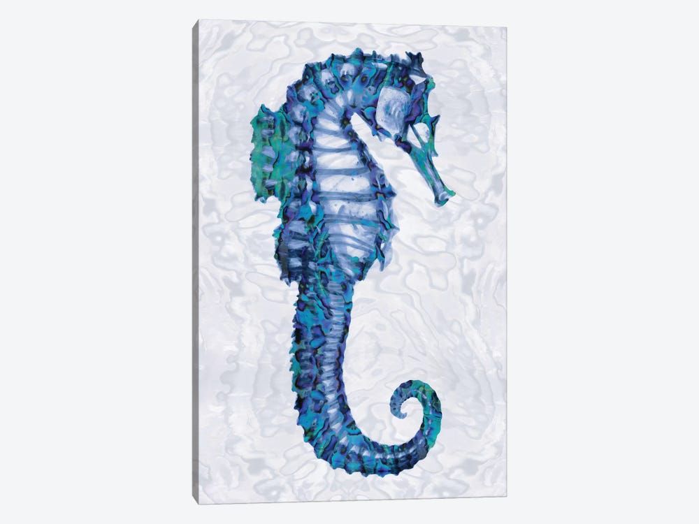 Sea Horse II by Melonie Miller 1-piece Canvas Art Print