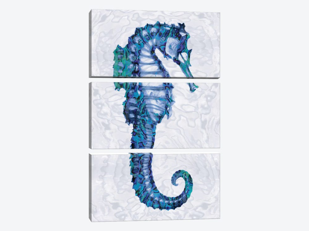 Sea Horse II by Melonie Miller 3-piece Canvas Art Print