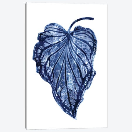 Indigo Palm III Canvas Print #MMR51} by Melonie Miller Canvas Art