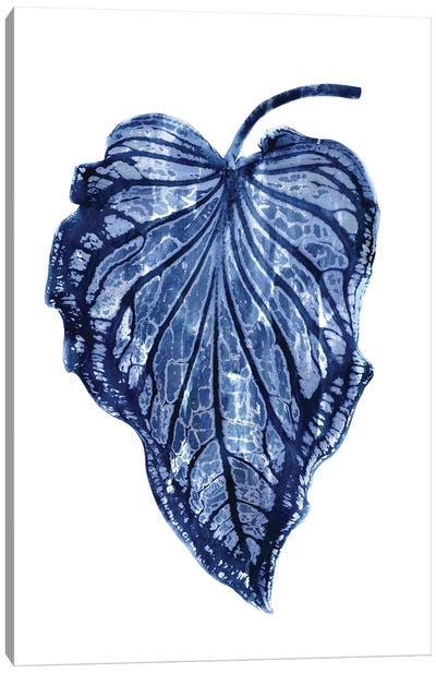 Indigo Palm III Canvas Art Print