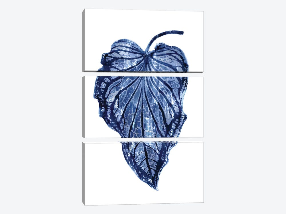 Indigo Palm III by Melonie Miller 3-piece Canvas Wall Art