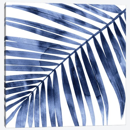 Indigo Palm, Close-Up I Canvas Print #MMR53} by Melonie Miller Canvas Art