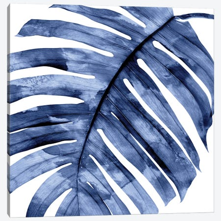 Indigo Palm, Close-Up II Canvas Print #MMR54} by Melonie Miller Canvas Print