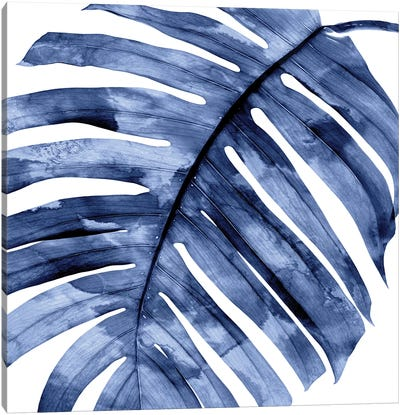 Indigo Palm, Close-Up II Canvas Art Print