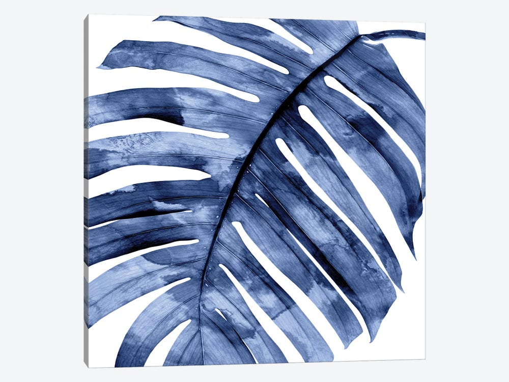 Indigo Palm, Close-Up II by Melonie Miller 1-piece Canvas Art Print