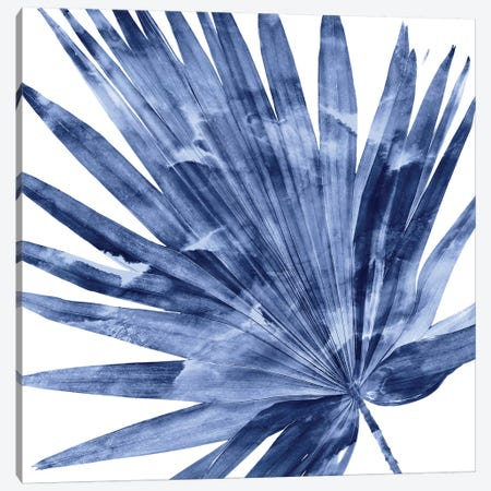 Indigo Palm, Close-Up IV Canvas Print #MMR56} by Melonie Miller Canvas Art Print