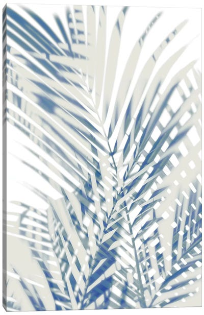 Palm Shadows  I Canvas Art Print