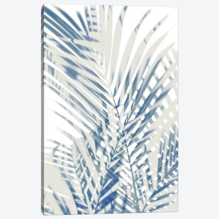 Palm Shadows  I Canvas Print #MMR57} by Melonie Miller Canvas Print